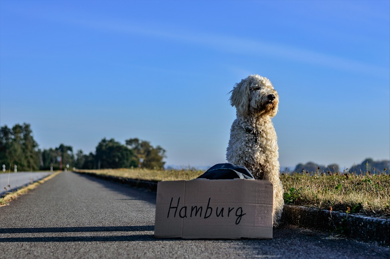 Hamburg - über uns